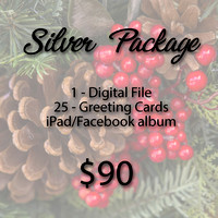 Purchase the Silver Package